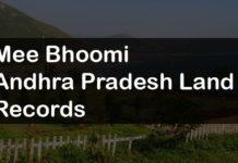 Meebhoomi AP Bhulekh Land Record