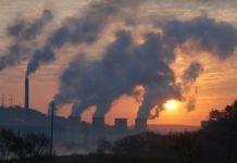 Pollution Essay