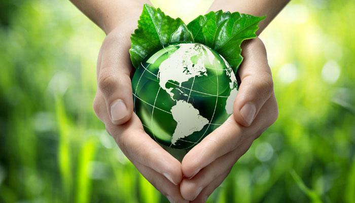 Save Environment Essay in Hindi
