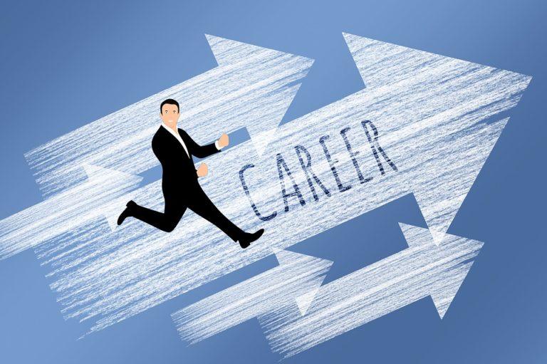 Essay on Career in Hindi