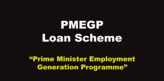 PMEGP Scheme in Hindi